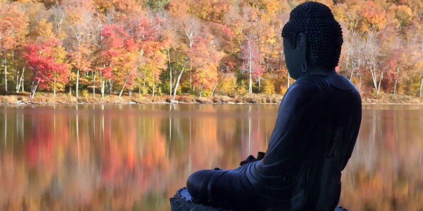 We maintain daily Zazen, and hold regularly-scheduled intensive training periods, including multiple-day Sesshins (retreats)